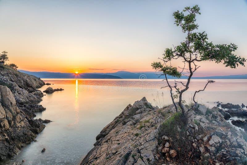 Paisaje colorido de la playa durante puesta del sol con el pequeño árbol en frente fotografía de archivo libre de regalías