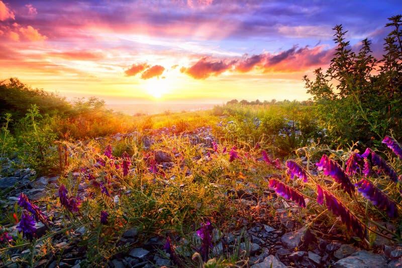 Paisaje colorido de la puesta del sol imagen de archivo libre de regalías