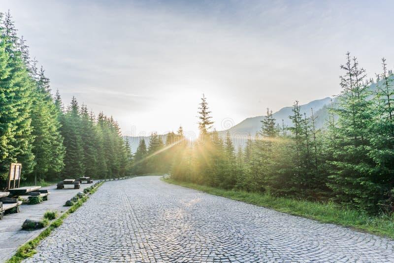 Paisaje colorido de la salida del sol del verano en las montañas imagenes de archivo
