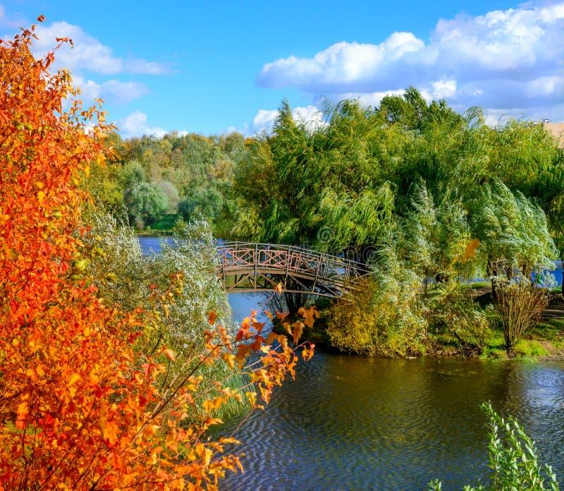 Paisaje colorido del otoño en el parque de la ciudad fotografía de archivo