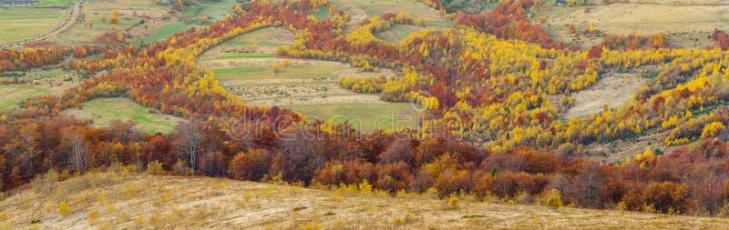 Paisaje colorido del otoño en el pueblo de montaña Mañana en las montañas cárpatas fotografía de archivo libre de regalías