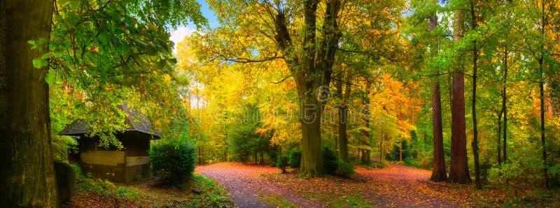 Paisaje colorido y tranquilo del otoño fotografía de archivo