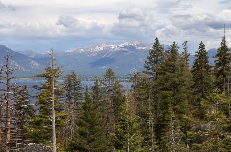 Paisaje con el bosque, el lago y la montaña fotos de archivo