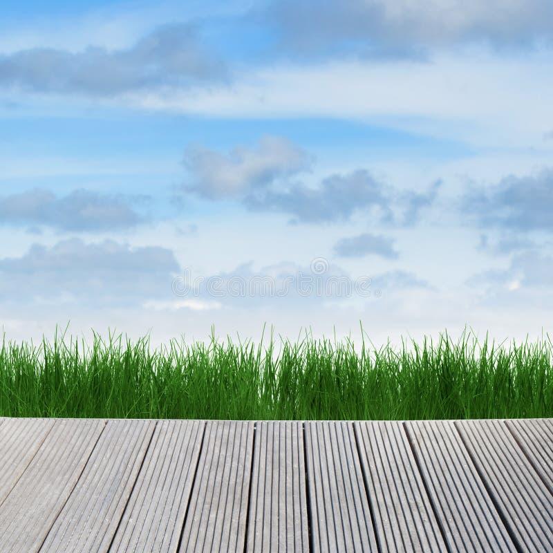 Paisaje con el cielo, la hierba y la madera fotos de archivo libres de regalías