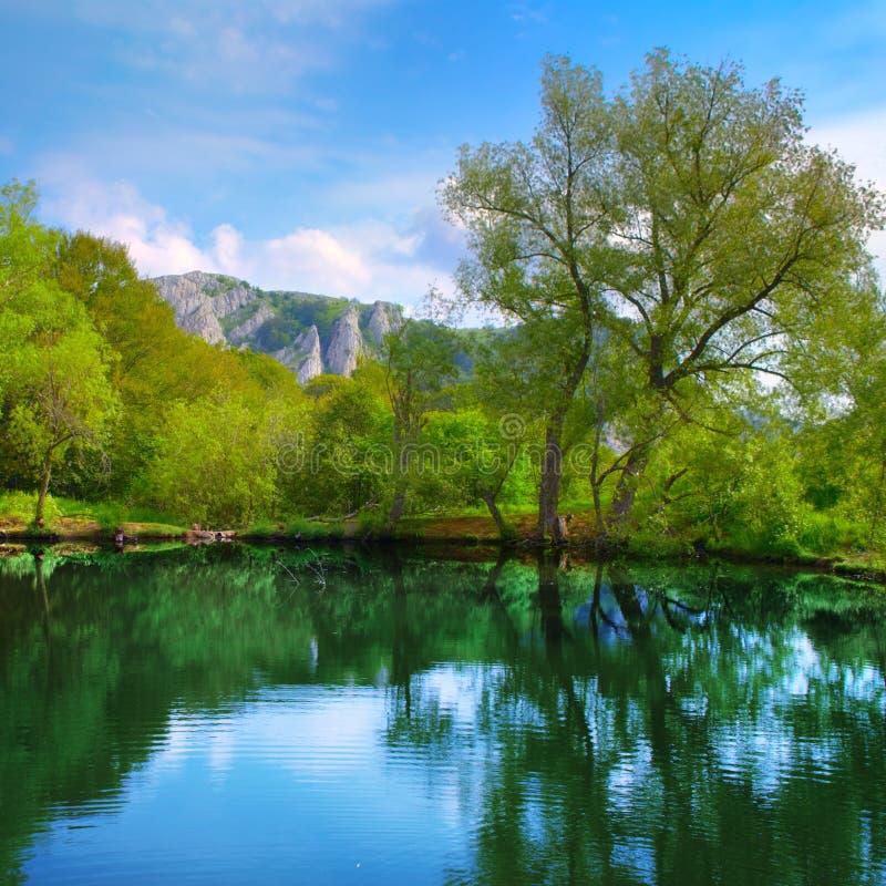 Paisaje con el lago fotografía de archivo libre de regalías