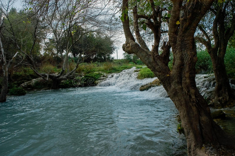 Download Paisaje Con El Río Y Los árboles Imagen de archivo - Imagen de foreground, bosque: 44850953