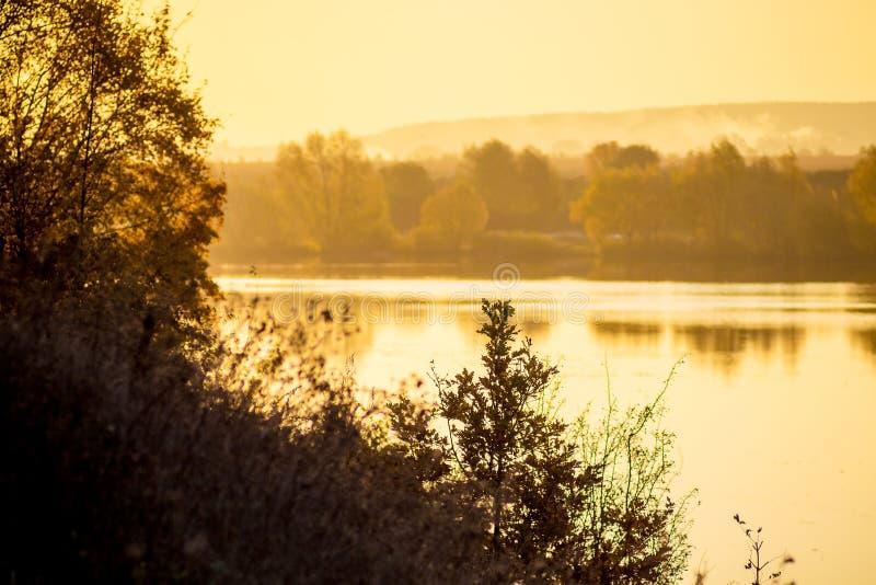 Paisaje con el río y los árboles durante la puesta del sol en tones_ amarillo-naranja foto de archivo