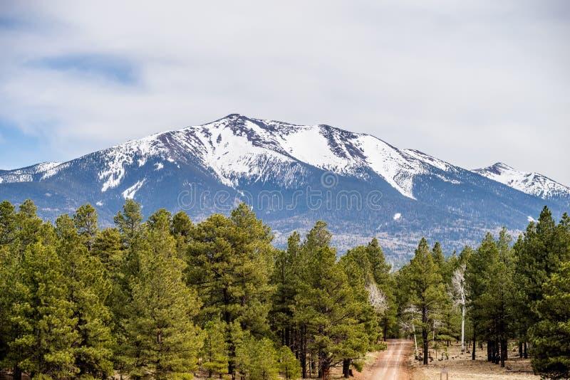 Paisaje con la más alto máximo de Humphreys de Arizona imágenes de archivo libres de regalías