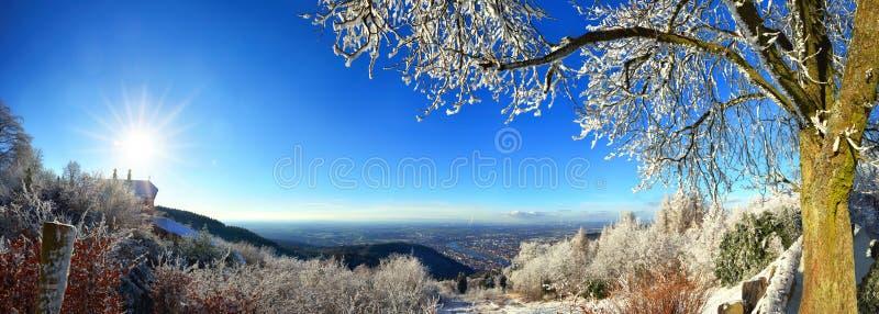 Paisaje con la opinión sobre Heidelberg, Alemania en invierno imagen de archivo libre de regalías