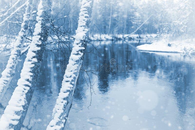 Paisaje con la primera nieve fotografía de archivo