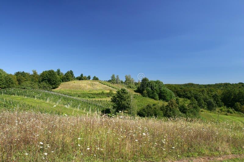 Paisaje con las colinas y el cielo azul imagen de archivo