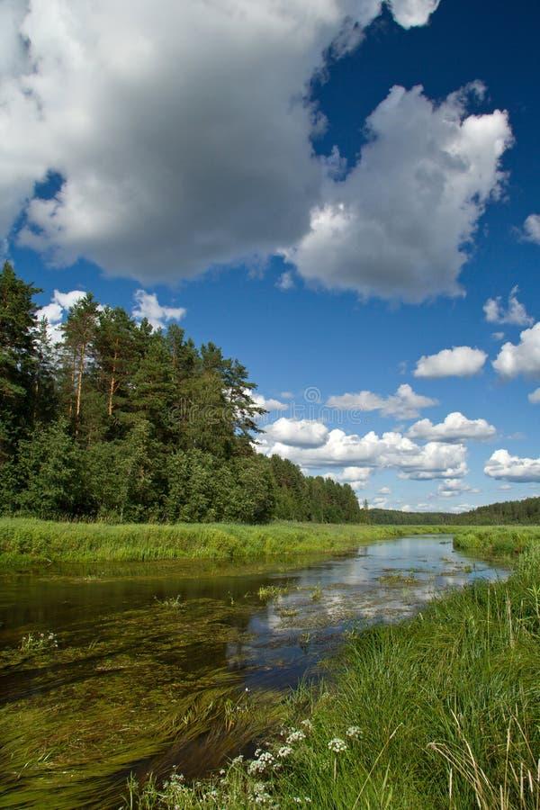 Paisaje Con Las Nubes, El Río Y El Bosque Fotos de archivo libres de regalías