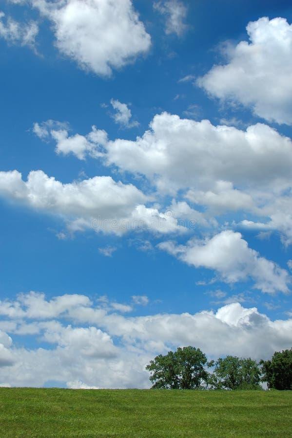 Paisaje Con Las Nubes Y El árbol Imagen De Archivo
