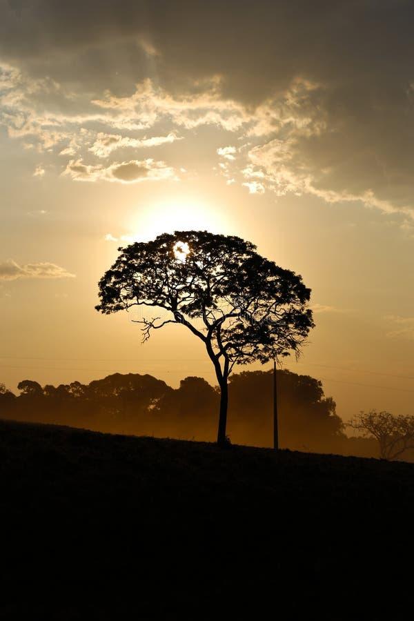 Paisaje con puesta del sol foto de archivo