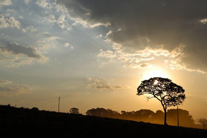 Paisaje con puesta del sol fotos de archivo libres de regalías