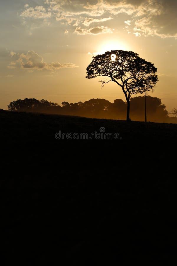 Paisaje con puesta del sol imagenes de archivo