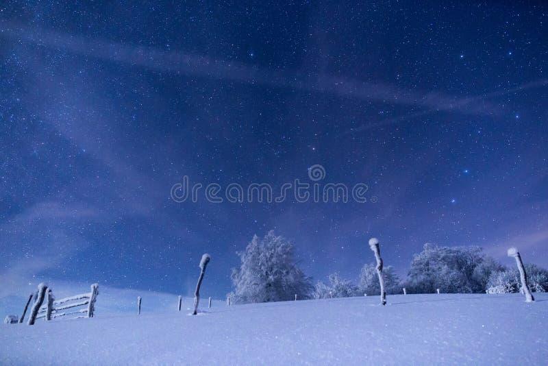 Paisaje congelado debajo de un cielo llenado de las estrellas imágenes de archivo libres de regalías