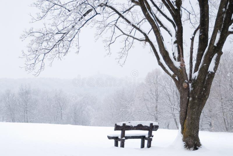 Paisaje congelado del invierno con el banco nevado fotos de archivo libres de regalías