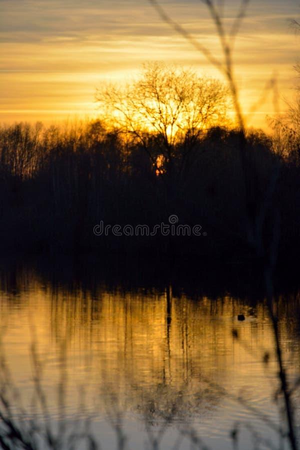 Paisaje congelado del invierno, puesta del sol hermosa foto de archivo