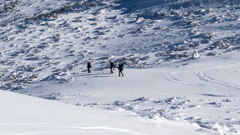 Paisaje congelado invierno fotos de archivo libres de regalías