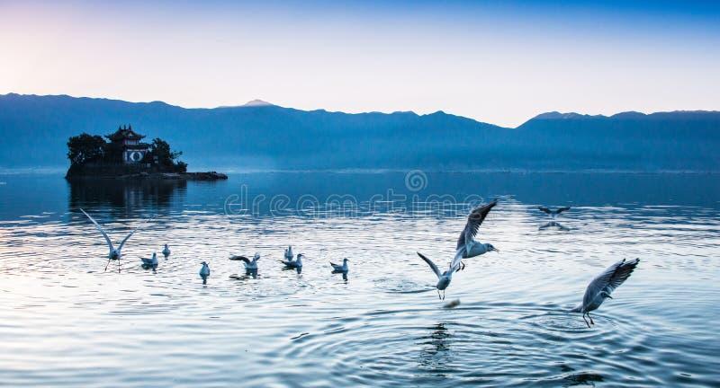 Paisaje costero del lago del erhai imágenes de archivo libres de regalías