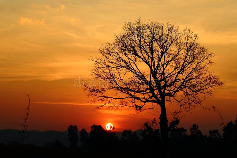 Paisaje, crepúsculo de oro de la luz de Tailandia fotos de archivo libres de regalías