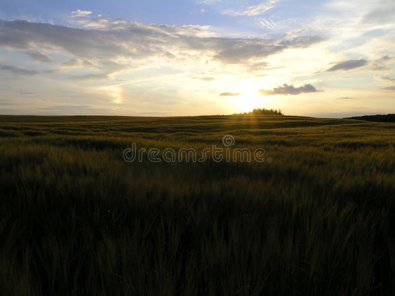 Paisaje danés de la puesta del sol fotografía de archivo