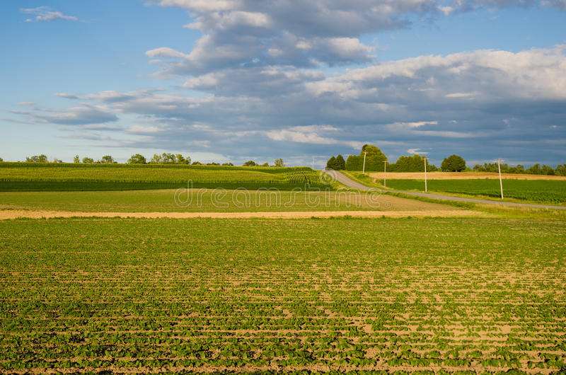 Paisaje de campos con el cielo y las nubes imagenes de archivo