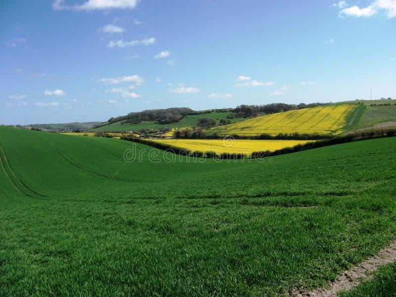 Paisaje de campos y de valles foto de archivo libre de regalías