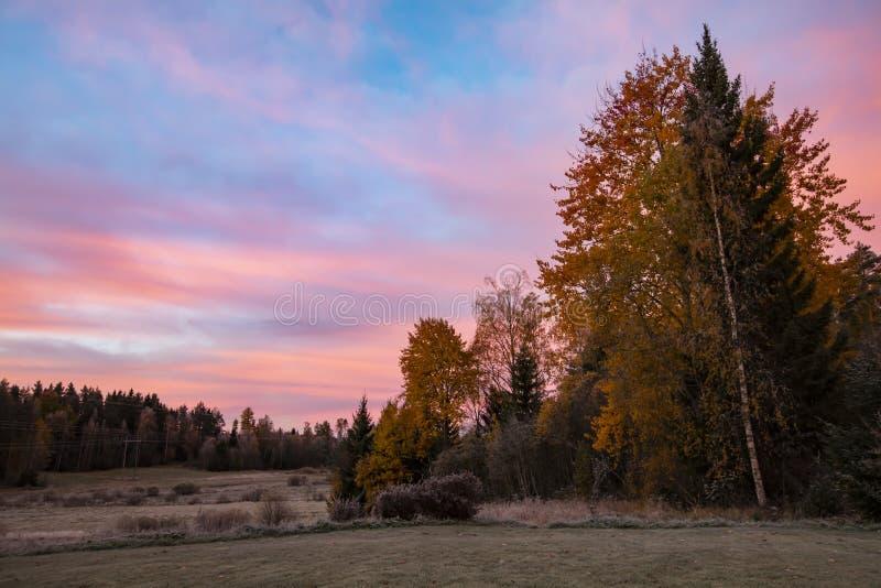 Paisaje de color naranja hermoso de la mañana en Finlandia fotos de archivo libres de regalías