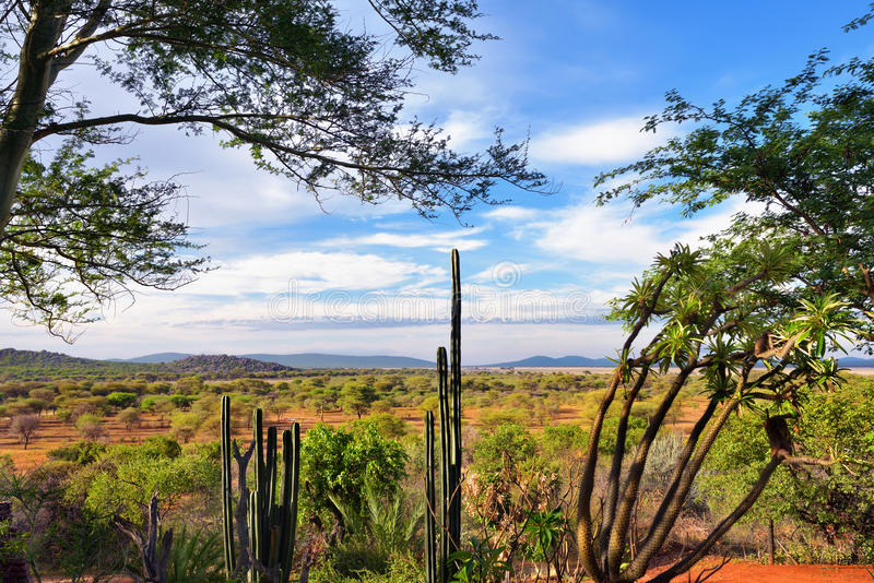 Paisaje de Damaraland, Namibia, África foto de archivo libre de regalías
