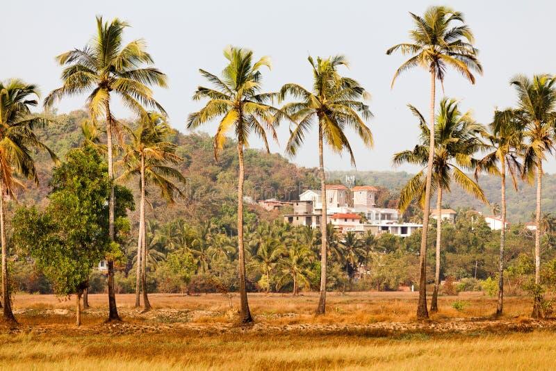 Paisaje de Goa imagen de archivo libre de regalías