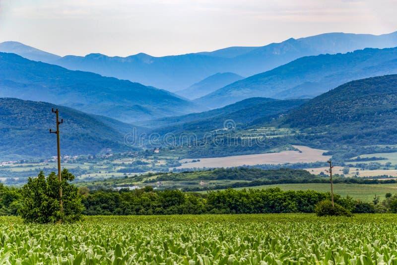 Paisaje de igualación agrícola en Bulgaria septentrional imagenes de archivo
