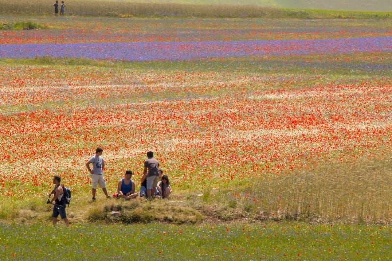 Paisaje de Italia foto de archivo