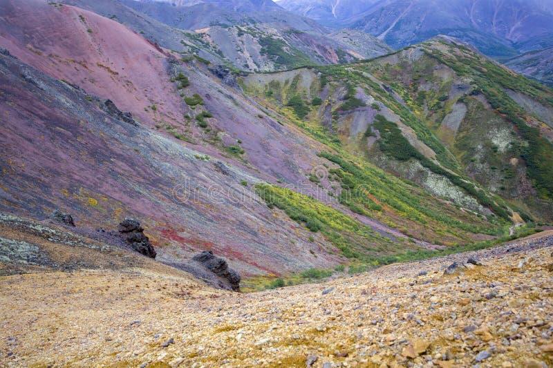 Paisaje de Kolyma, Syberia fotografía de archivo