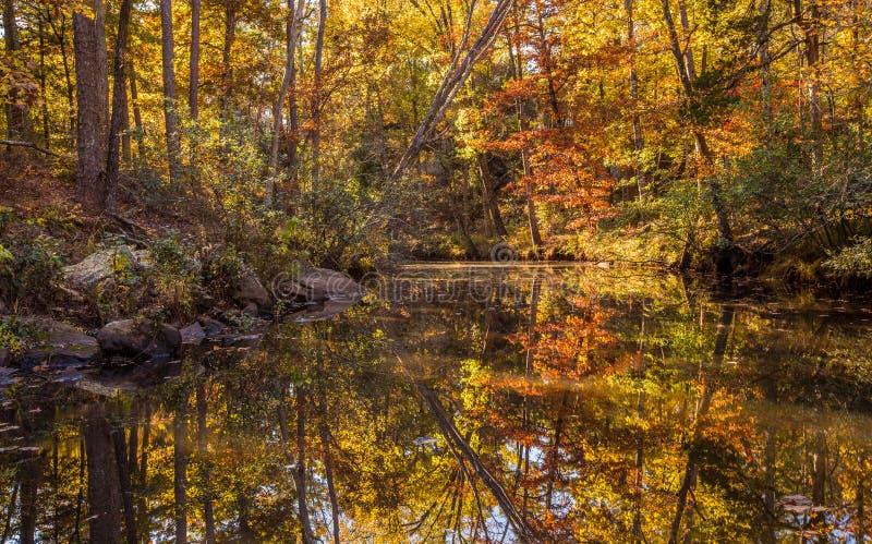 Paisaje de la caída de Arkansas, parque de estado pequeno de Jean foto de archivo libre de regalías