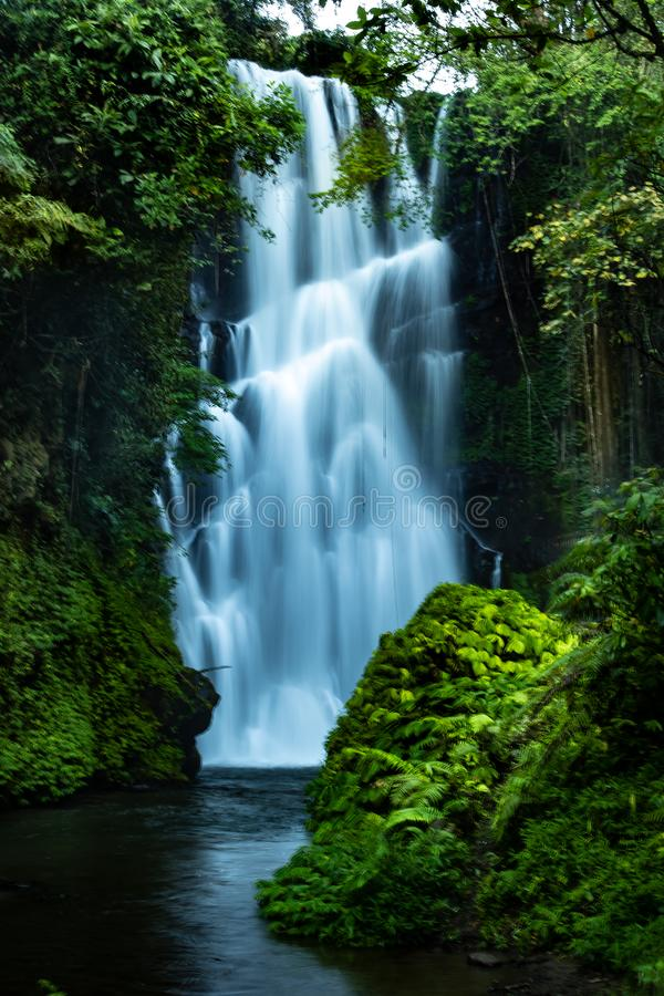 Paisaje de la cascada. Hermosa cascada Cemara escondida en la selva tropical de Sambangan, Bali. Velocidad de obturación lenta, m imagen de archivo