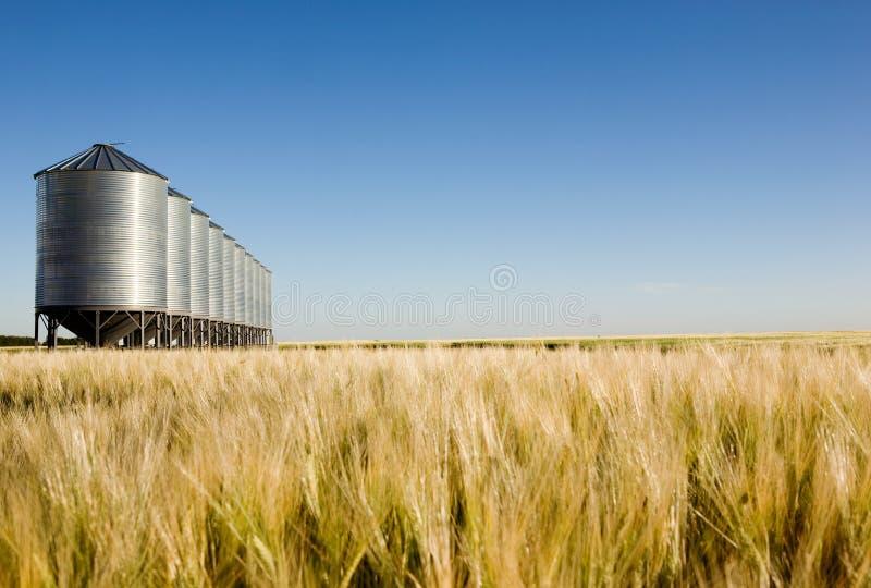 Paisaje de la cosecha de la pradera fotografía de archivo