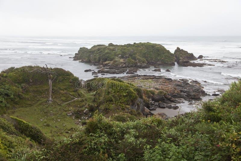 Paisaje de la costa costa en el parque nacional de Chiloe. imagen de archivo