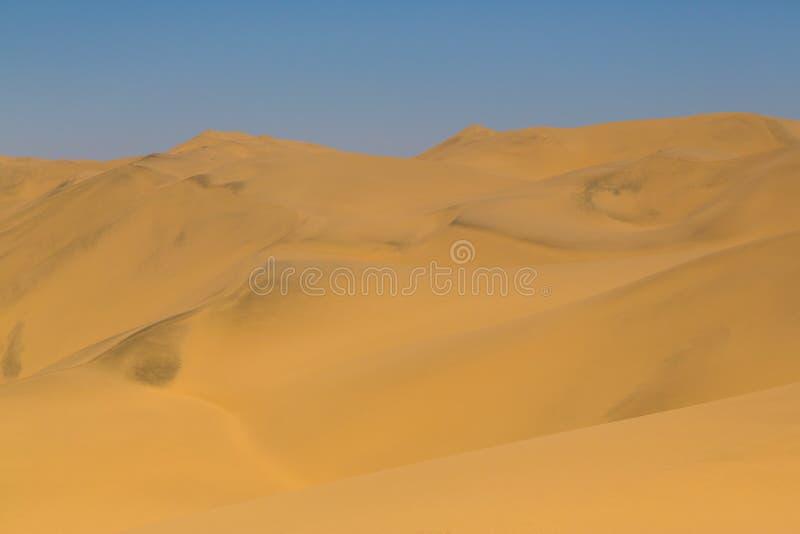 Paisaje de la duna de arena en el desierto de Namib imagen de archivo