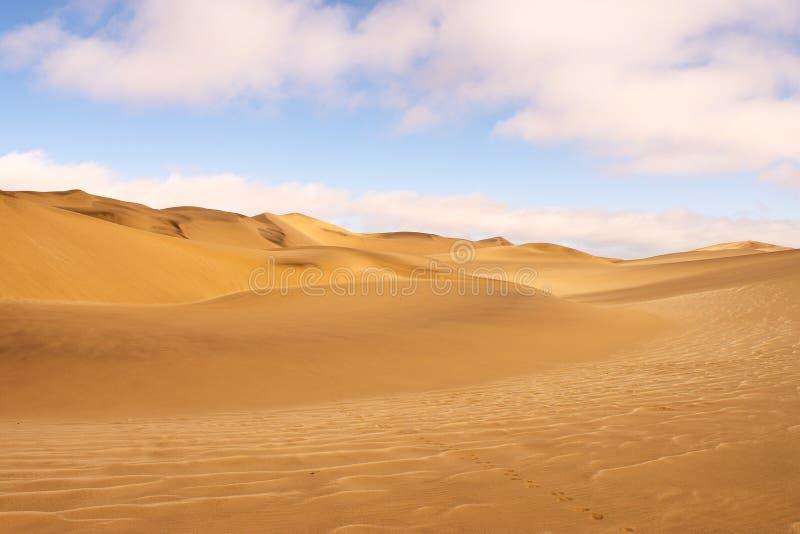 Paisaje de la duna del desierto de Namib imagenes de archivo