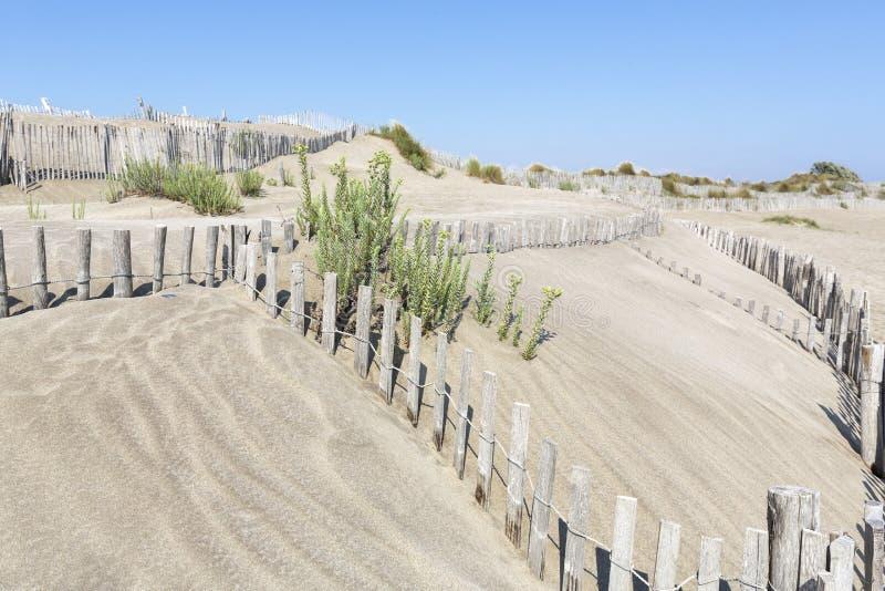 Paisaje de la duna, Francia meridional foto de archivo