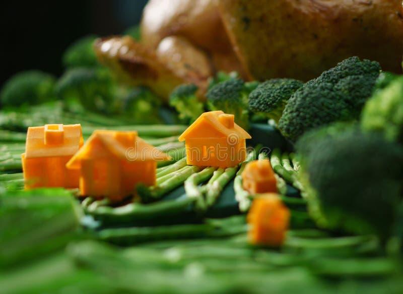 Paisaje de la fantasía de verduras con las pequeñas casas fotografía de archivo libre de regalías