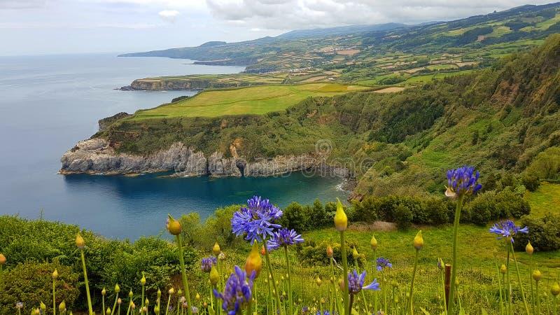 Paisaje de la isla de Azores fotografía de archivo