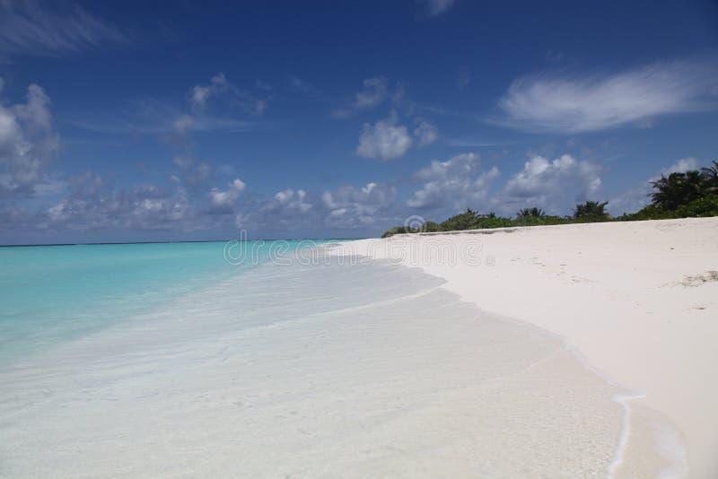 Paisaje de la isla en Maldives imagen de archivo libre de regalías