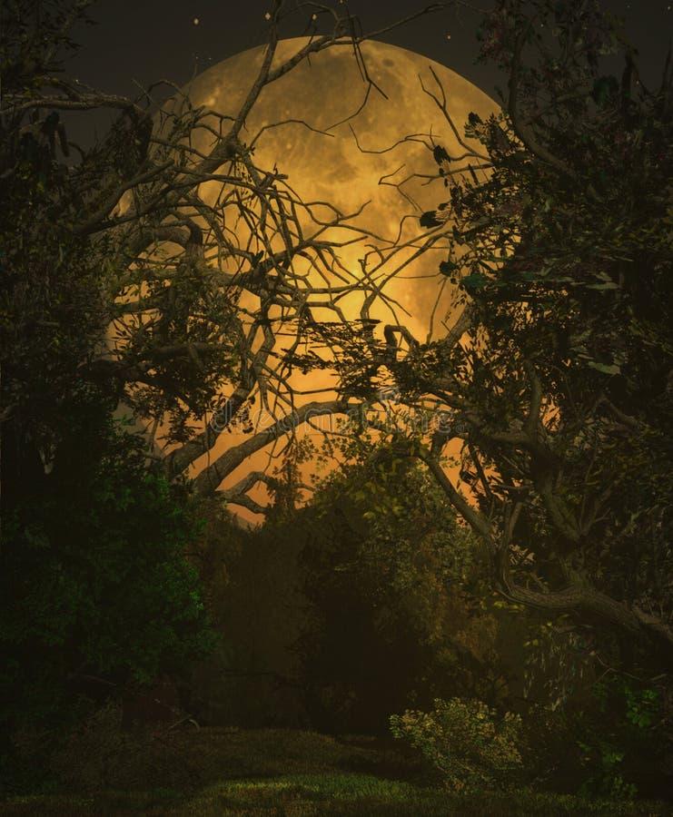 Paisaje de la luna fotografía de archivo libre de regalías