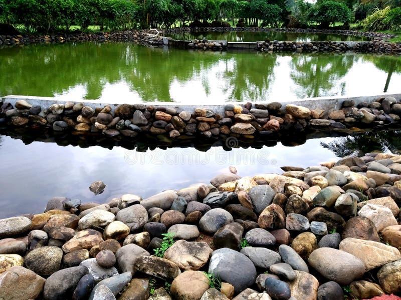 Paisaje de la meditaci?n Ambiente tranquilo y espiritual de la naturaleza Nadie, se relaja foto de archivo