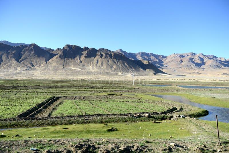 Paisaje de la meseta tibetana foto de archivo