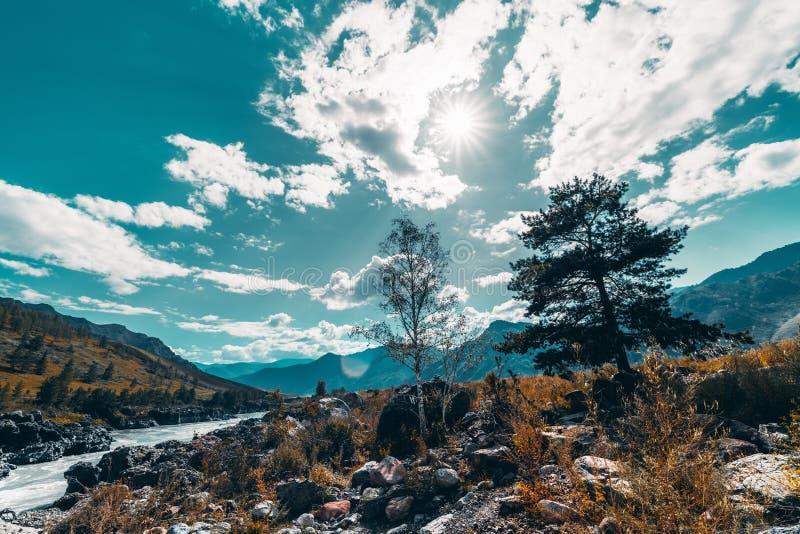 Paisaje de la montaña con el río, las colinas y dos árboles fotografía de archivo