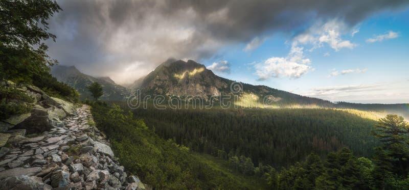 Paisaje de la montaña con la pista de senderismo foto de archivo
